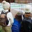 Україна приєднається до Декларації про безпеку шкіл
